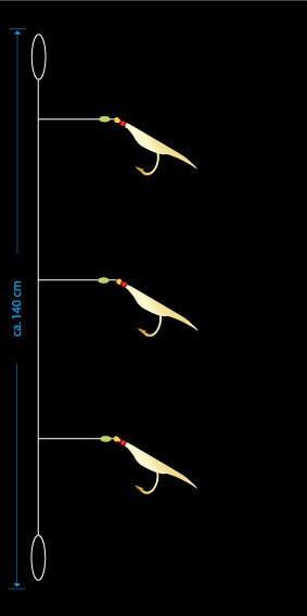 AQUANTIC Cod-Saithe-System