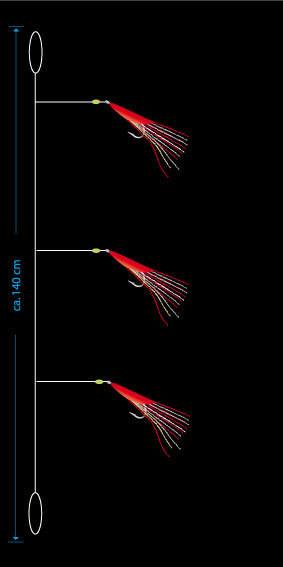 AQUANTIC Mackerel-Cod System